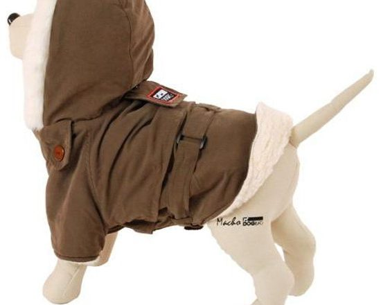 Animal Jacket