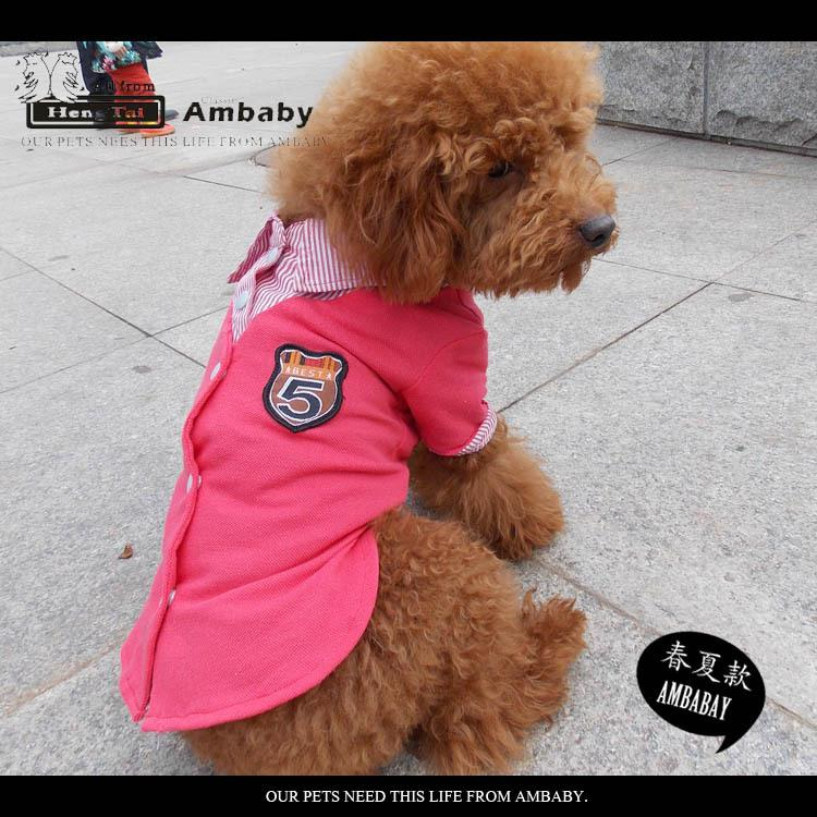 Big Brother Clothes For Dogs