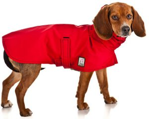 Beagle Dog Coats
