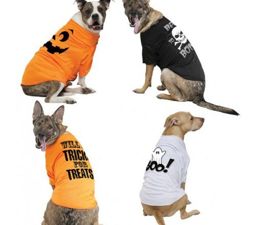 HALLOWEEN DOG CLOTHES