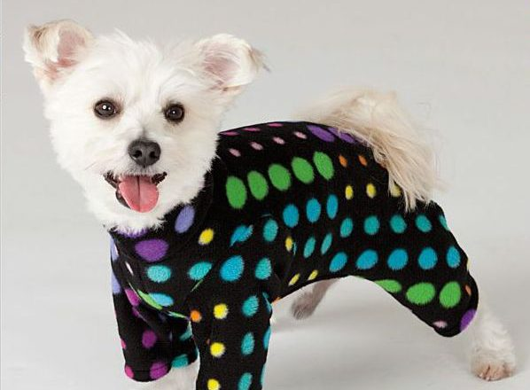 Dog Clothes Pattern Dress The Dog Clothes For Your Pets