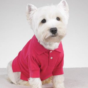 Shirts With Dogs