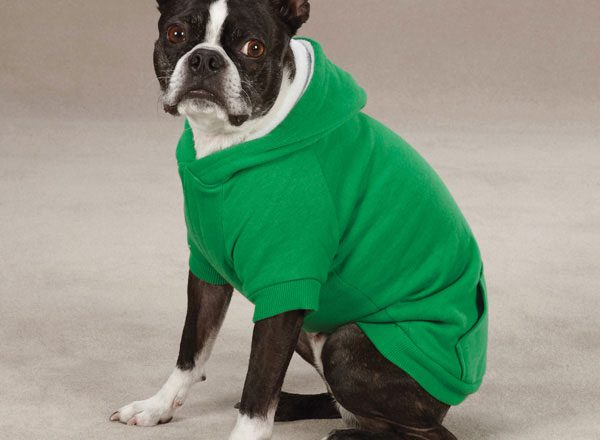 Puppy Shirts