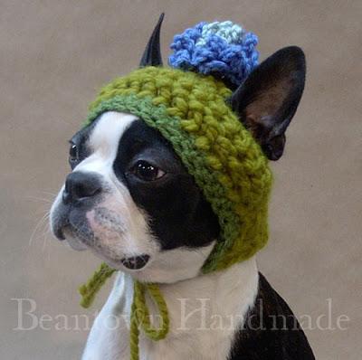 Dog Hats Dog Hats Petco