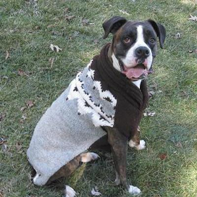 Dog Sweater Page 2 Of 4 Dress The Dog Clothes For Your Pets