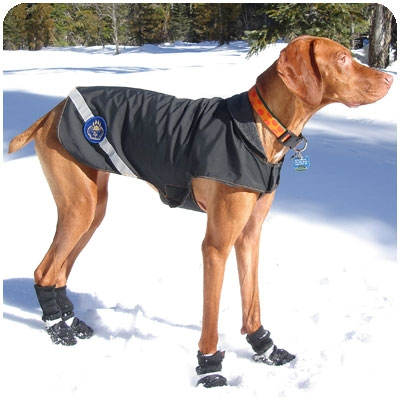 DOG WINTER JACKET | Dress The Dog - clothes for your pets!