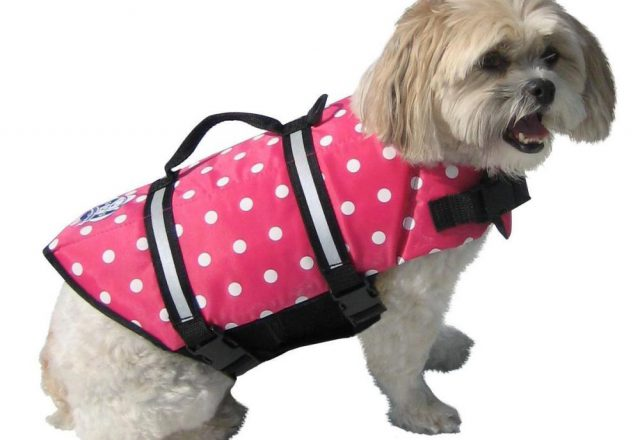 Pink Ladies Dog Jacket