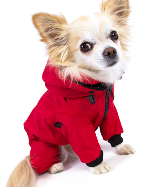 small dog snowsuits dress the dog   clothes for your pets