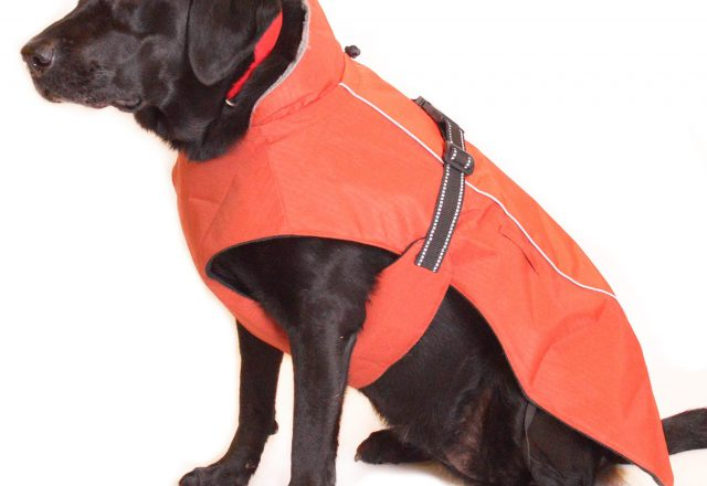 Waterproof Dog Jacket