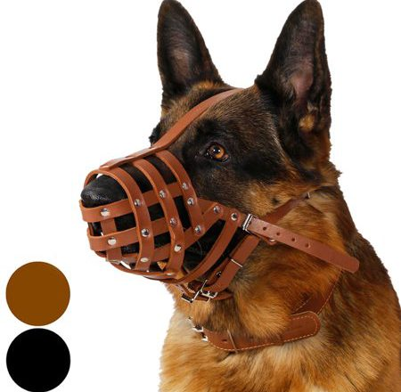 Leather muzzles for big dog
