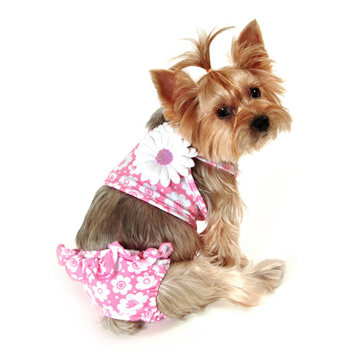 Bathing Suits For Dogs photo - 1