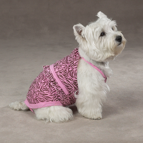Bathing Suits For Dogs photo - 2