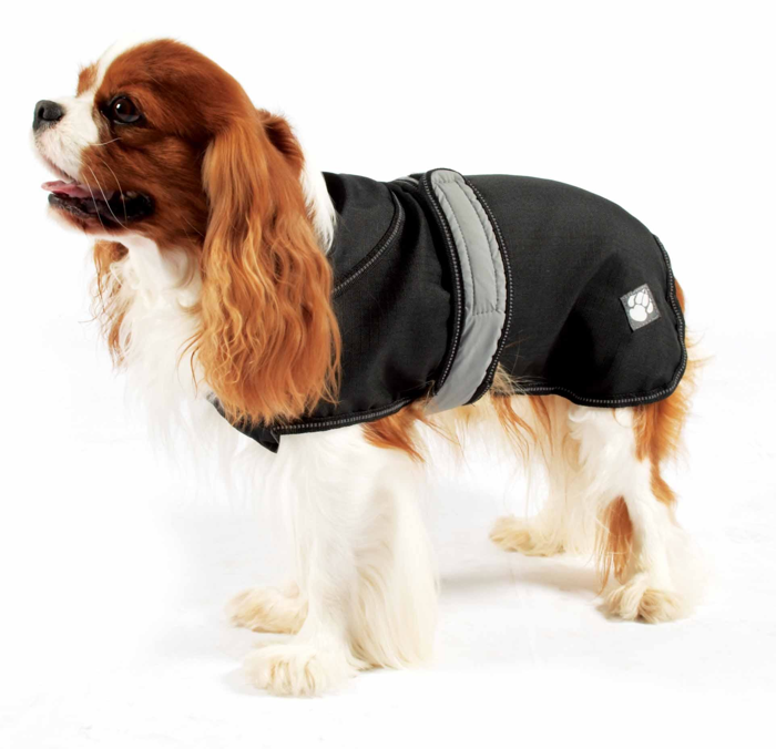 Best Dog Coat photo - 1