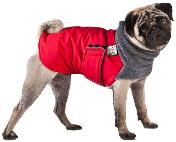 Best Winter Dog Coat photo - 2