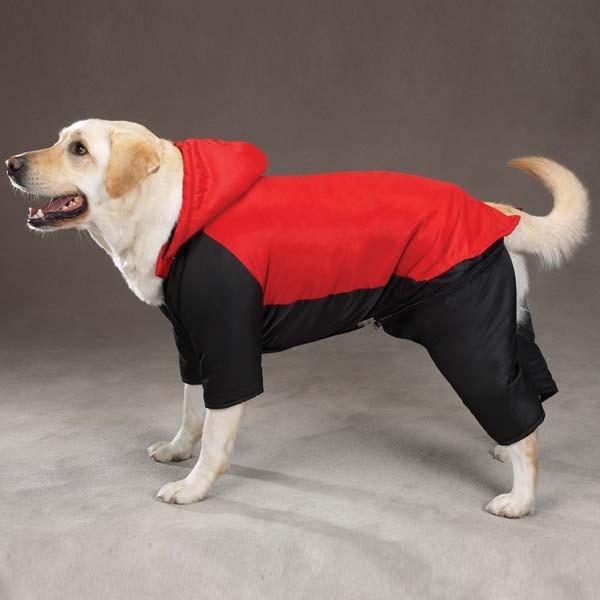 Big Dog Cloths photo - 1