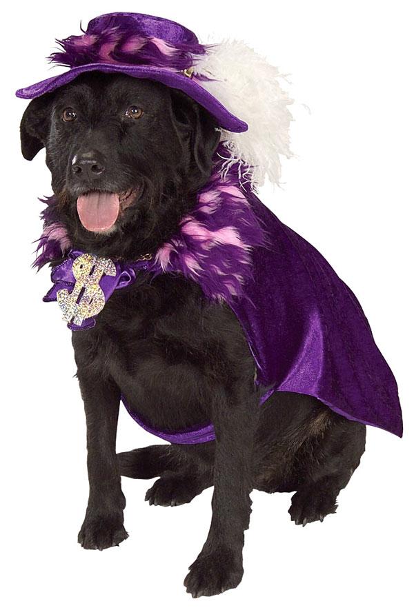 Big Dog Costumes photo - 1