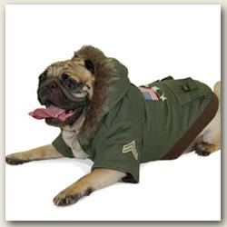 Big Dog Jacket photo - 1