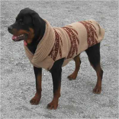 Big Dog Sweaters photo - 3