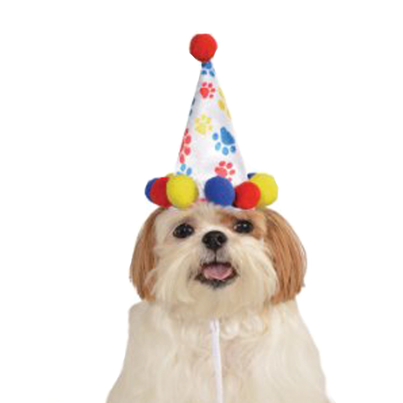 Birthday Hats For Dogs photo - 1