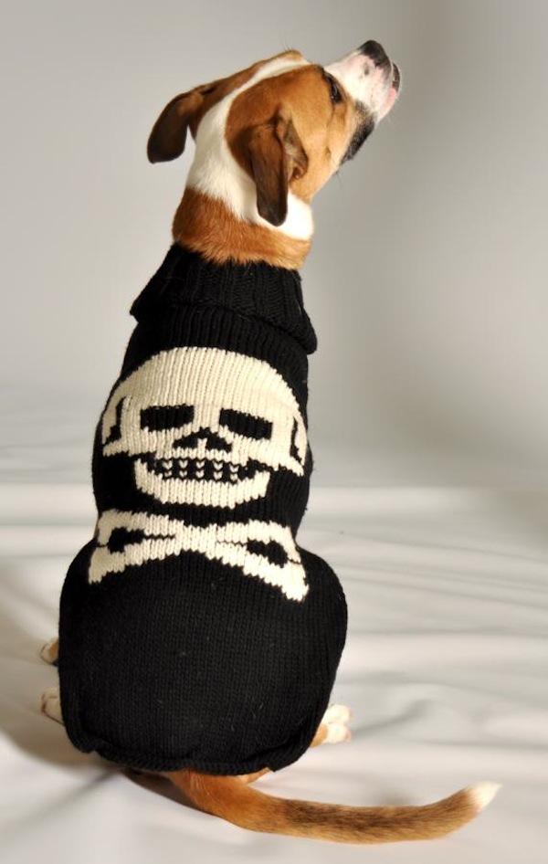 Black Dog Sweater photo - 2