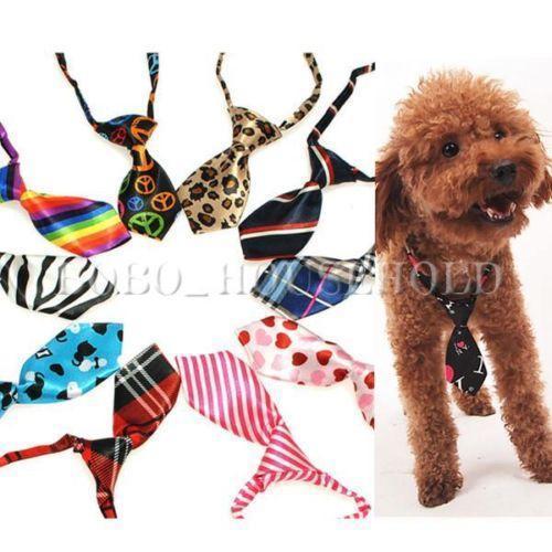 Boy Puppy Clothes photo - 1
