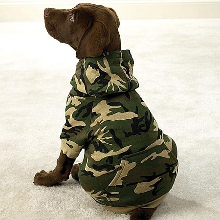 Camo Dog Hoodies photo - 1