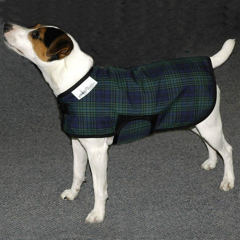Canine Winter Coats photo - 3