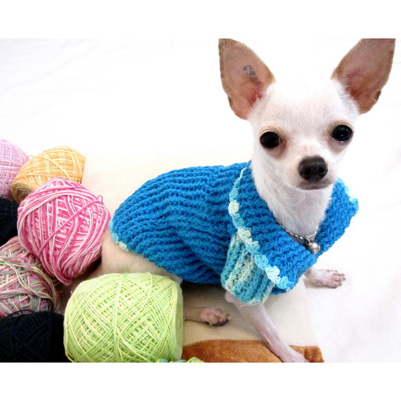 Chihuahua Dog Clothes photo - 1