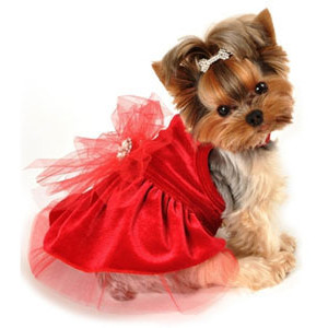 Christmas Dog Dresses photo - 1