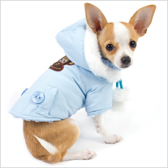 Clothes For Little Dogs photo - 1