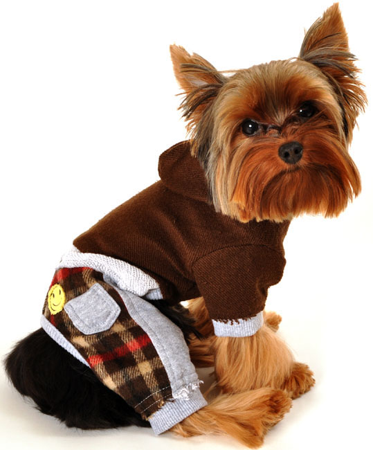 Clothes For Puppies Small photo - 2