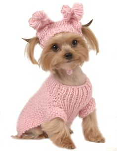 Clothes For Small Dogs photo - 3
