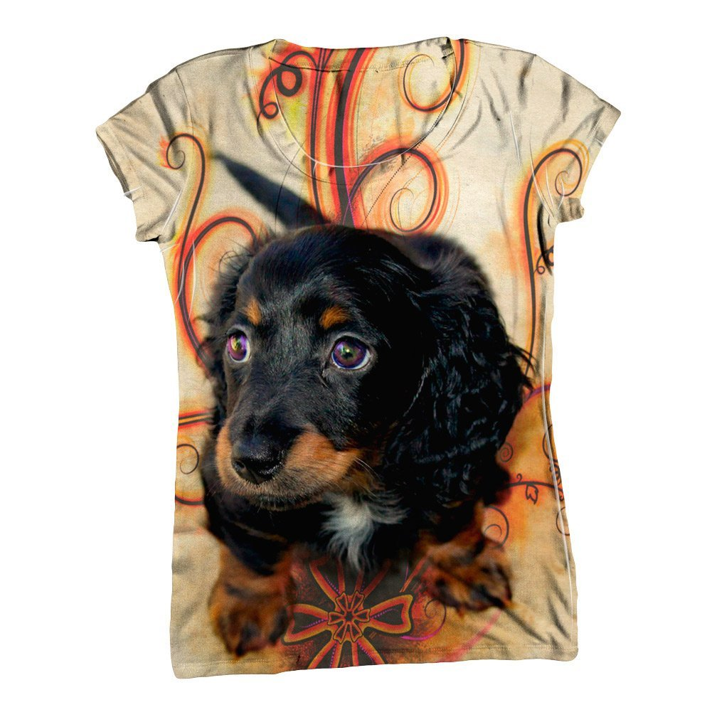 Clothing For Dachshunds photo - 1