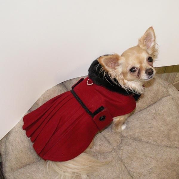 Coats For Small Dogs photo - 3