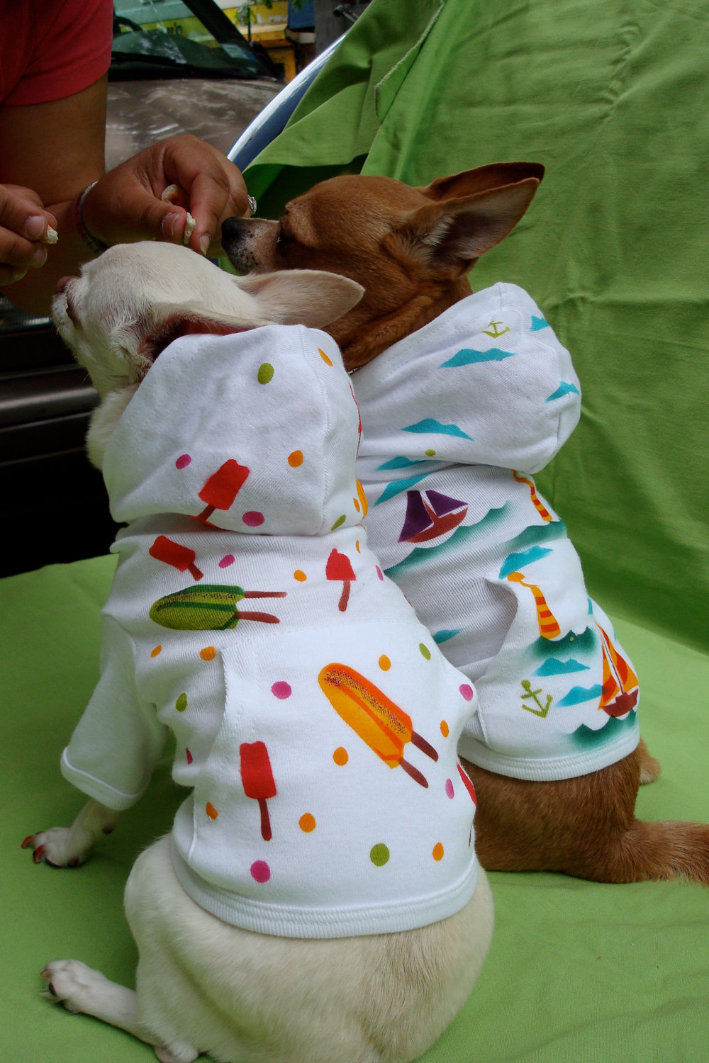 Cool Dog Hoodies photo - 1