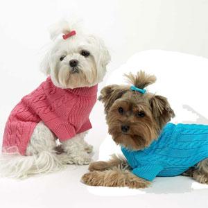 Cotton Dog Sweaters photo - 1