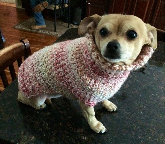 Cotton Dog Sweaters photo - 3