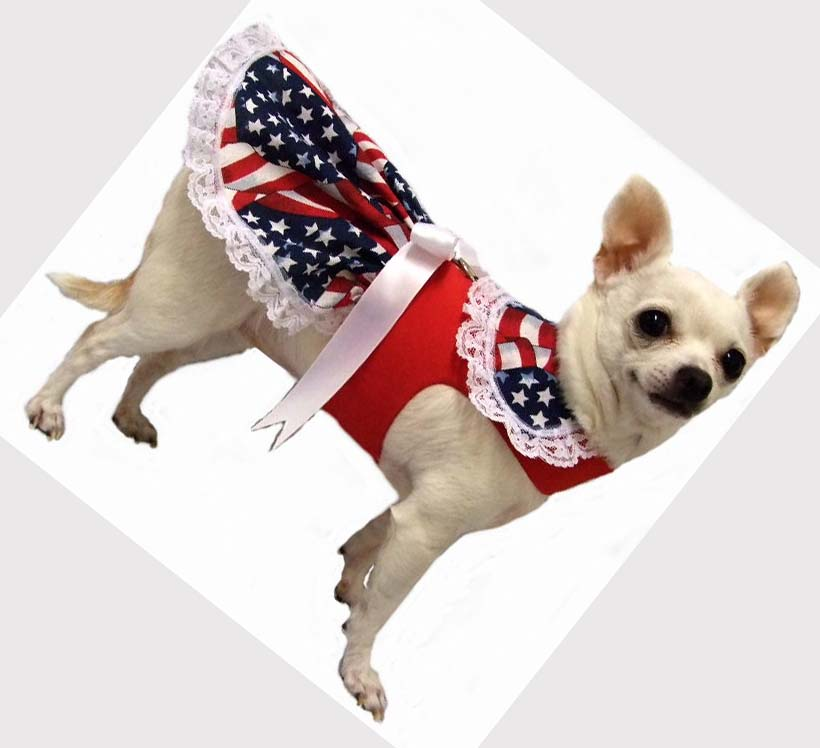 Cute Dog Apparel photo - 1