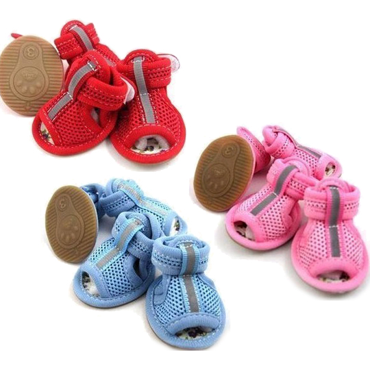 Cute Dog Shoes photo - 1