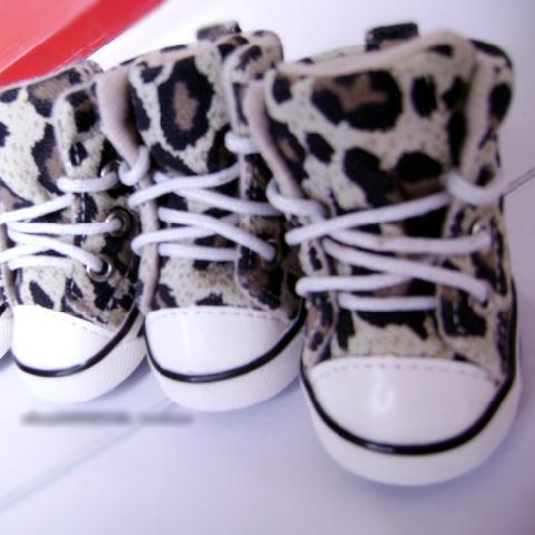 Cute Dog Shoes photo - 2