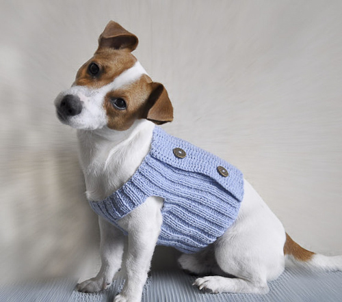 Cute Dog Sweaters photo - 1