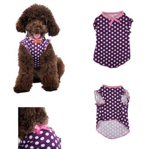 Cute Girl Puppy Clothes photo - 3