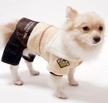 Cute Pet Clothes photo - 3