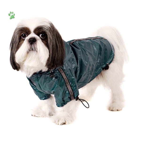 Designer Dog Coats For Small Dogs photo - 1