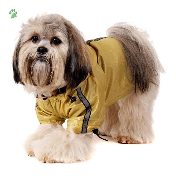Designer Dog Coats For Small Dogs photo - 2