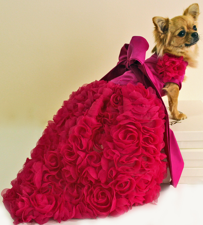 Designer Dog Dresses photo - 1
