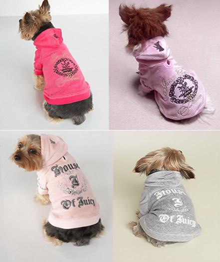 Designer Dog Outfits photo - 1