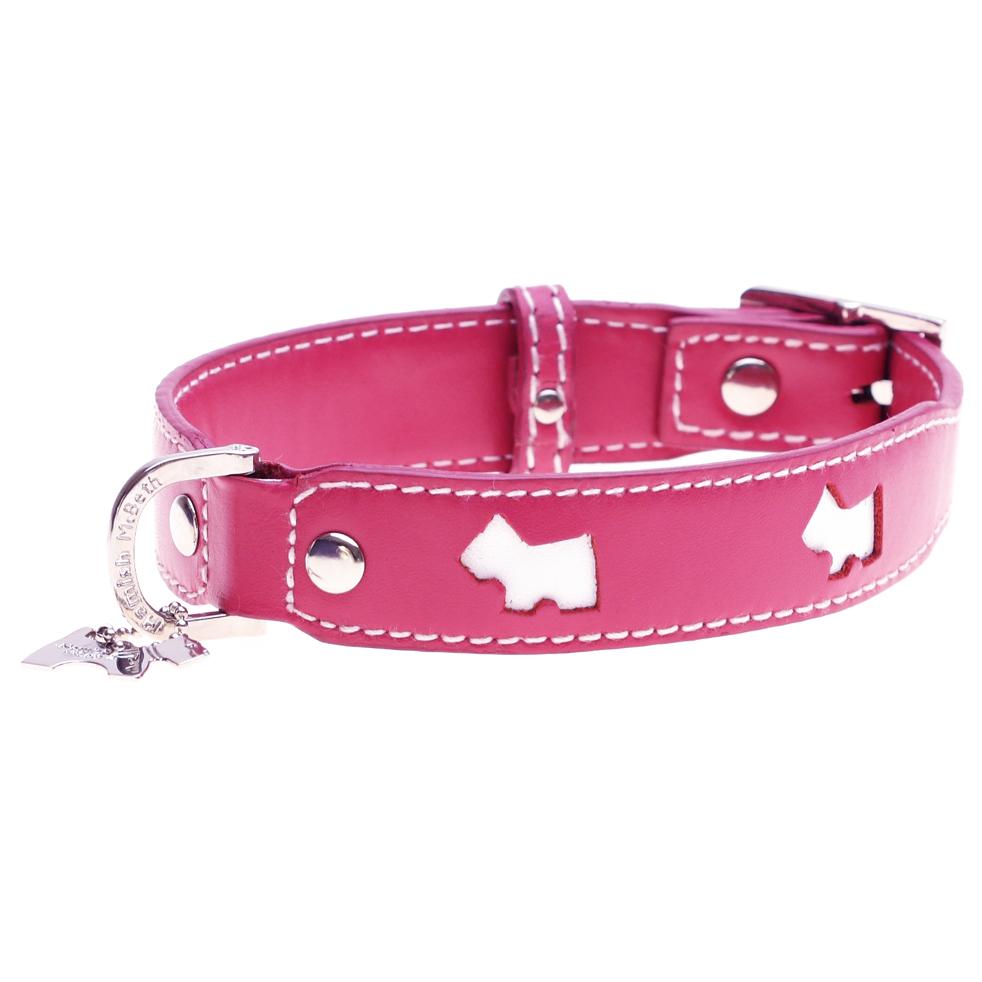 Designer Puppy Collars photo - 1