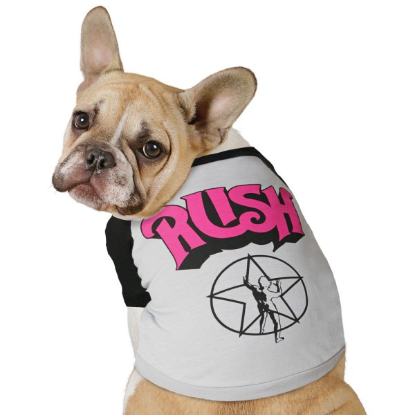 Dog Band Shirts photo - 1