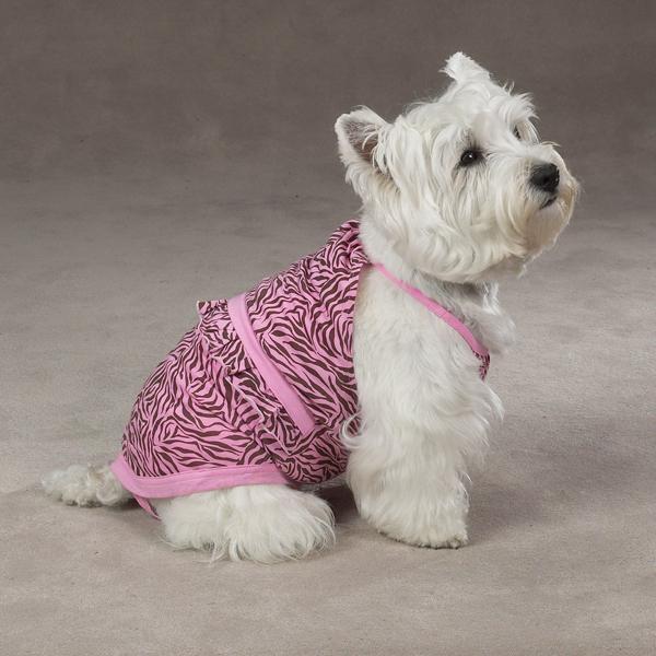 Dog Bathing Suit photo - 1